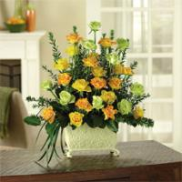 Yellow, Orange & Green Spray Roses in a Footed Planter by America