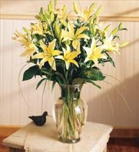 LILIES ARRANGED IN A VASE FOR SYMPATHY by America
