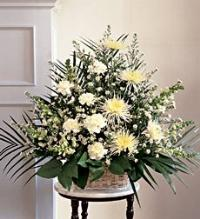 SYMPATHY BASKET IN WHITE by America