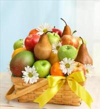 All Fruit Basket for Sympathy by America