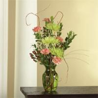 Green Spider Mums, Orange Carnations & Brown Hypericum in a Vase by America