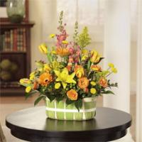 Orange Spray Roses, Yellow/Red Tulips, and Yellow Lilies Basket by America