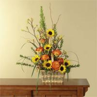 Sunflowers, Orange Roses & Yellow Kangaroo Paws in a Basket by America