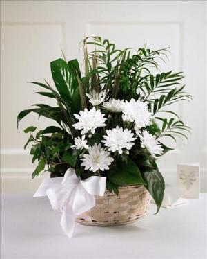 Peaceful Garden™ Basket by America's Funeral Florist
