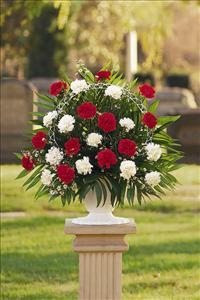 Red & White Carnation Basket by America