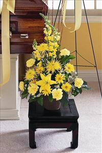 Yellow Triangular Arrangement by America