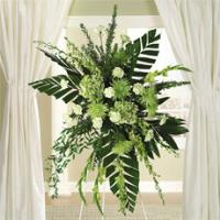 Green Dendrobium Orchids, Hydrangea & Fuji Mums Standing Spray by America