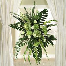 Green Dendrobium Orchids, Hydrangea & Fuji Mums Standing Spray by America's Funeral Florist